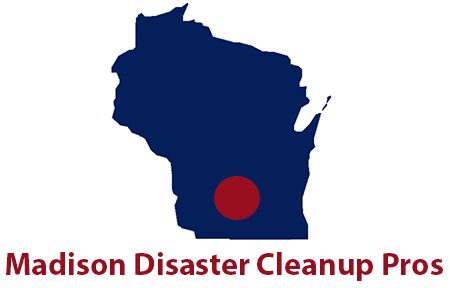 Disaster Cleanup Pros